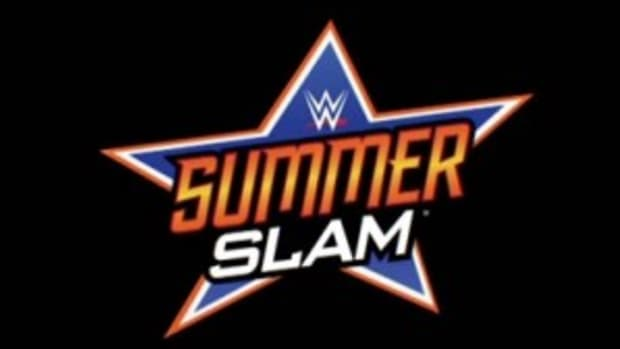 New-SummerSlam-Logo-2014-300x194
