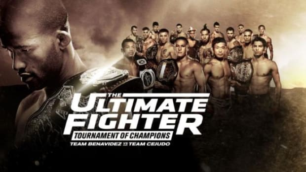 The Ultimate Fighter 24 Finale