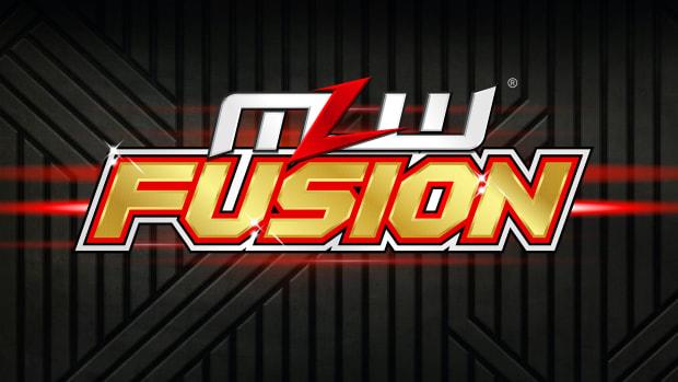 MLW grey logo