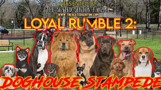 loyal rumble