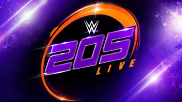 Notes on 205 Live Viewership, Plans for 2019