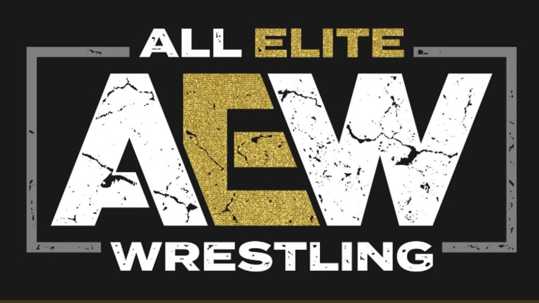 All Elite Wrestling Officially Announced