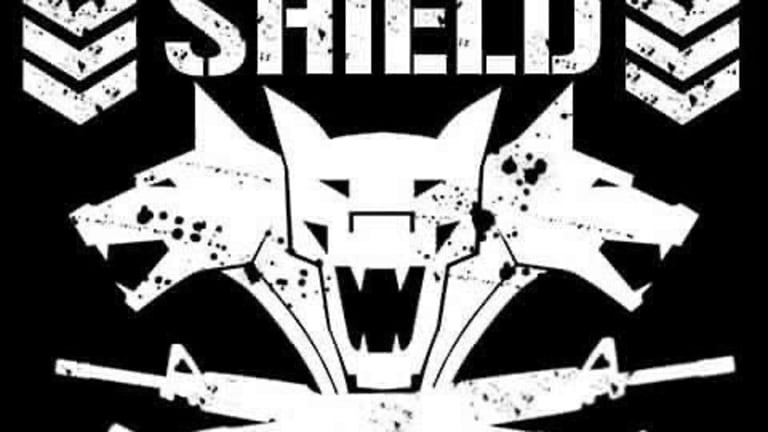 What if there's a return of the Shield in 2020?