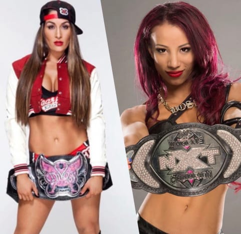 """In July 2015, only two championships existed for the women! For RAW and SmackDown, the Divas Championship was spread between both brands. The other title was the NXT Women's Championship, but this was when NXT was referred to as the """"developmental"""" brand. At that time, Nikki Bella was in the middle of her historic reign as Divas Champion and Sasha Banks held the NXT Women's Championship."""