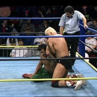 January_16,_1993_WCW_Saturday_Night_19.jpg