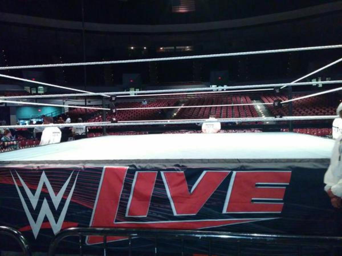 WWE Live 2015