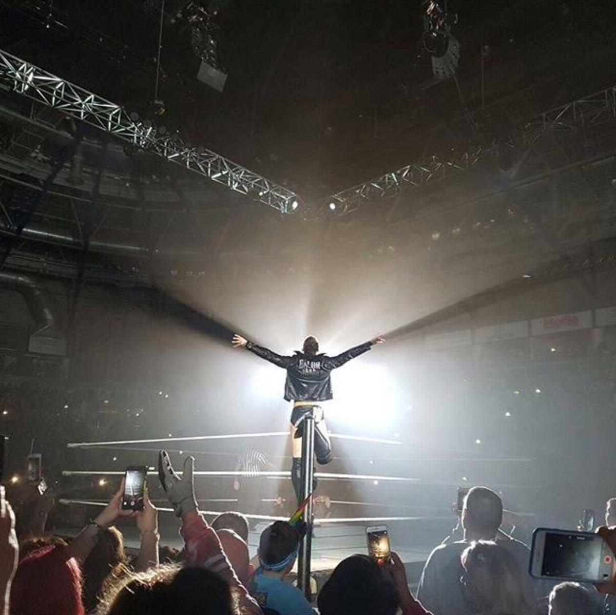 Finn Balor WWE Live