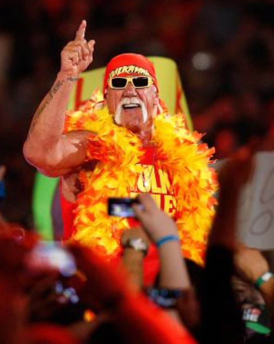Hulk Hogan New