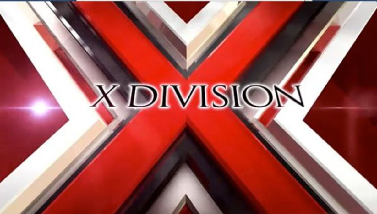 Risultati immagini per X Division