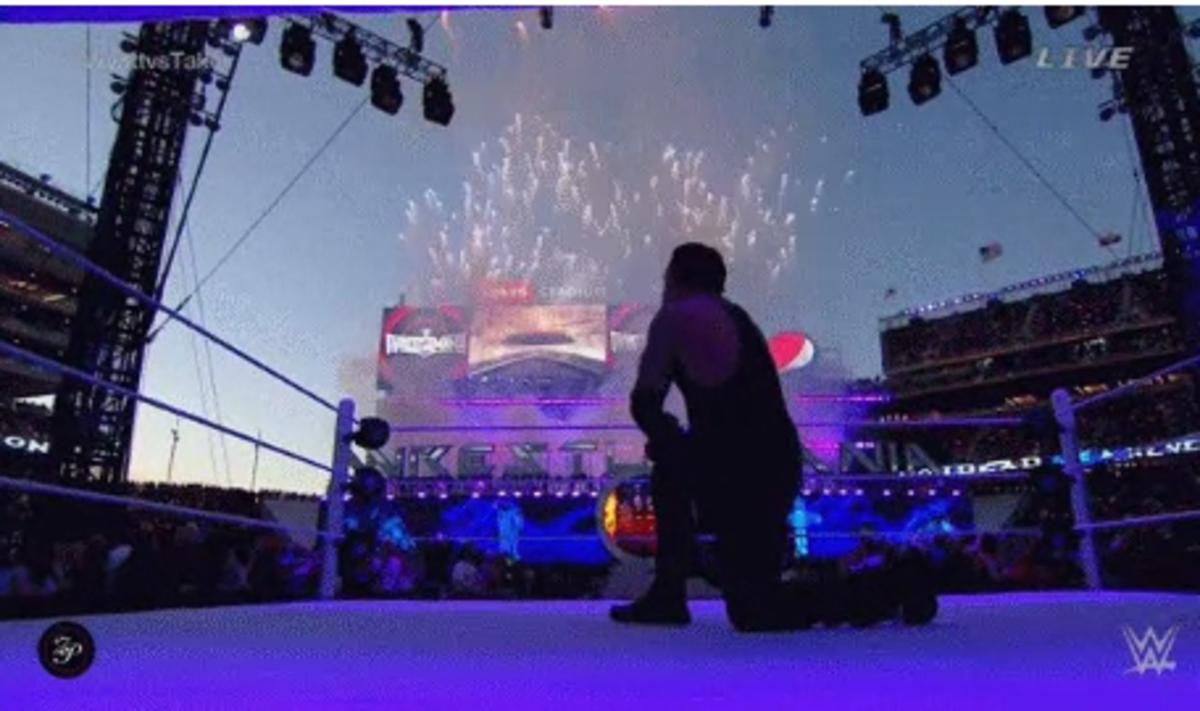 Undertaker 2015