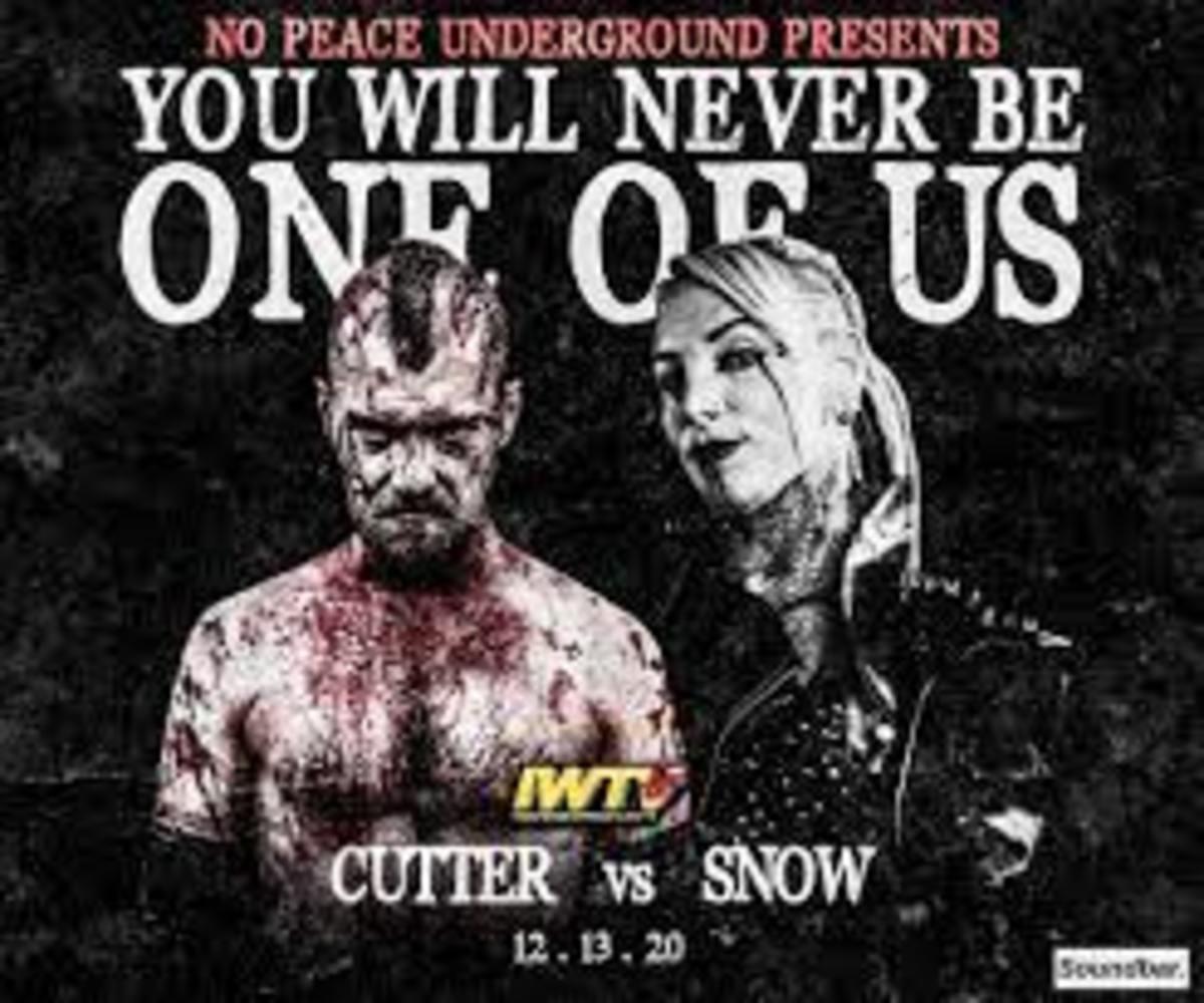 cutter vs snow